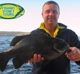 Mark with a pig from the washes